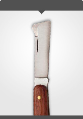 Budding and Grafting Knife with polished wooden handle, left-handed Length: 10.5 cm
