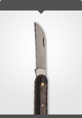 Budding and Grafting Knife with horn handle Length: 10.5 cm